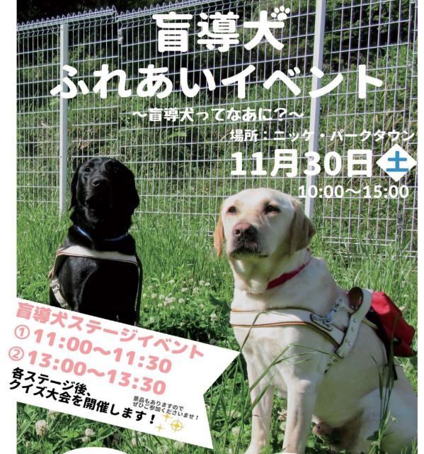 盲導犬ふれあいイベント